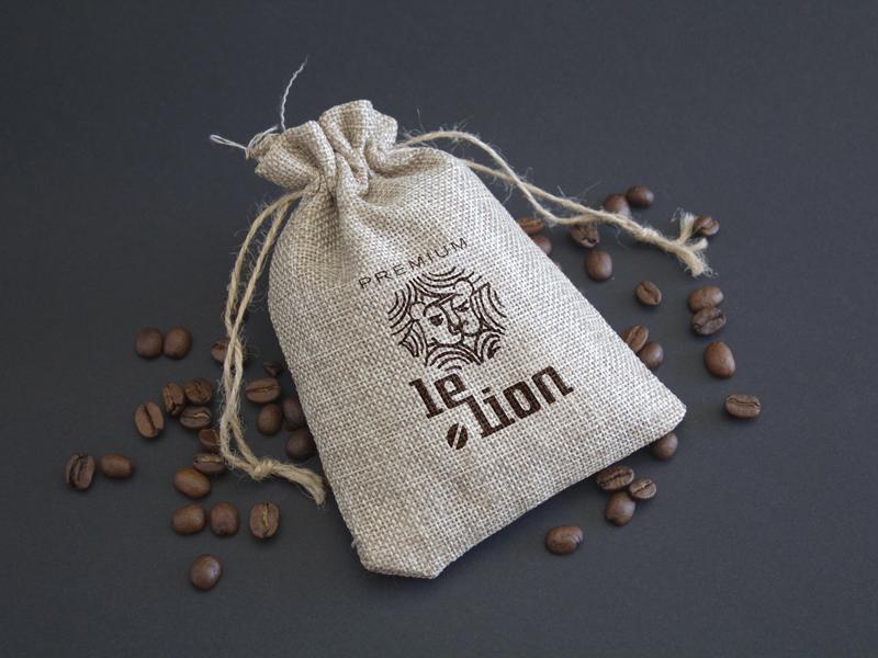 le-lion2